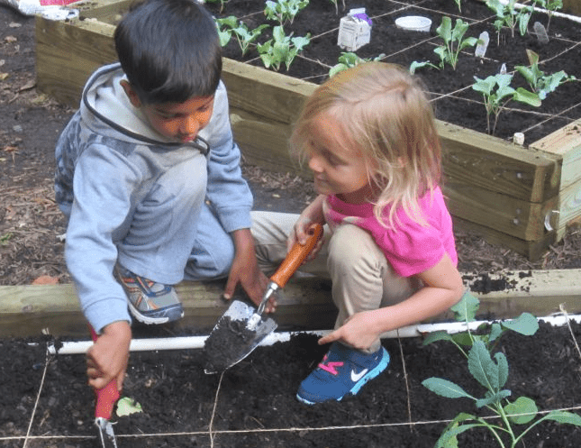 Eco-Education in Montessori Schools