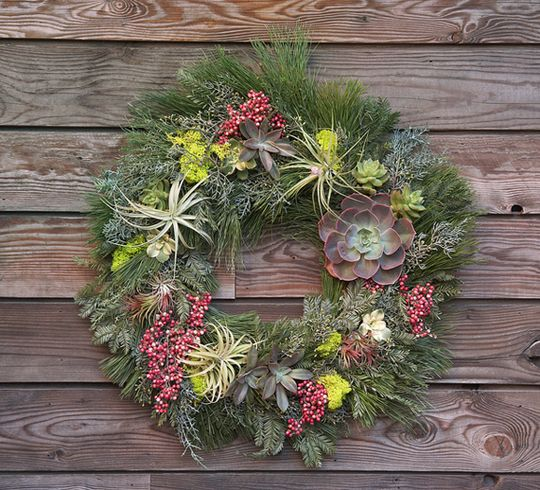 holiday-wreath-with-living-plants
